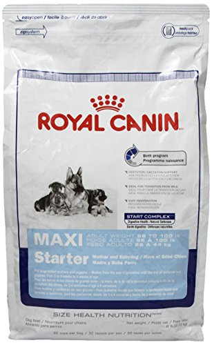 Royal Canin Maxi Starter Mother And Babydog, Dry Dog Food Formula, 6-Pound Bag