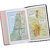 Holy Bible: KJV Giant Print Edition: Two-tone Pink / Brown (King James Bible)