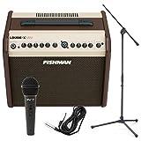 Best Acoustic Amps - Fishman Loudbox Mini 60Watt Two Channel Acoustic Amp Review