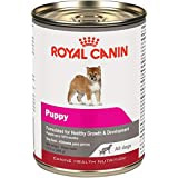 Royal Canin Canine Health Nutrition Puppy Canned Dog Food, 13.5 oz Can (Case of 12)