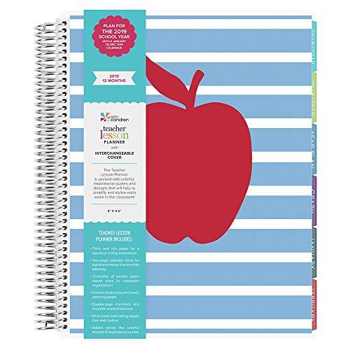Lesson Planner - Striped Apple - Jan 2019 - Dec 2019 (12 Month) ()