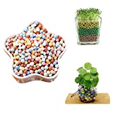 FIVE BEE 1.1 lbs 500g/Pack Multicolor Ceramsite Stone Gardening Decor Hydroponic Grow Media, Plants Flower Home Decor Micro Landscape Ventilation Drainage Soilless Cultivation Soil Stone (S-5mm)