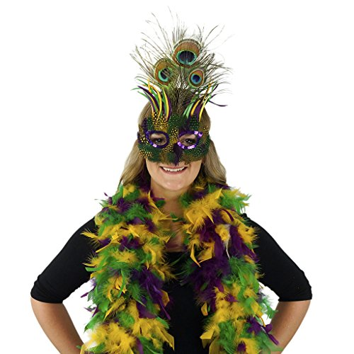 Zucker Feather Products Peacock Mask with Multi Color Mardi Gras Chandelle Boa ()