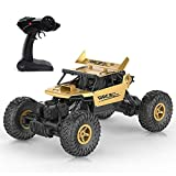 KOLAMAMA Remote Control Car,RC Car for Kids&Adults,2.4Ghz 4WD High Speed 1/18 Scale Electric Racing Car Off Road...