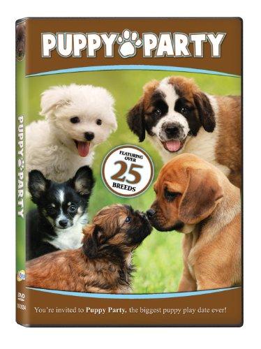 Party Store Colorado Springs (Puppy Party)
