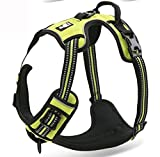 """Chai's Choice Pet Products 27""""-32"""" Best Front Range No-Pull Dog Harness, Large, Green"""