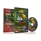 Relaxing Birds DVD - Tropical Bird Feeder - Cute and Colourful Birds with Natural Bird Sounds Videos for Your Pets