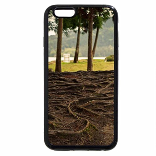 iPhone 6S / iPhone 6 Case (Black) Tangled roots of trees