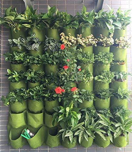 Macetas y macetas de la mejor calidad – macetas colgantes de pared verticales para jardín y macetas colgantes, macetas de jardín – por SeedWorld – 1 unidad: Amazon.es: Jardín