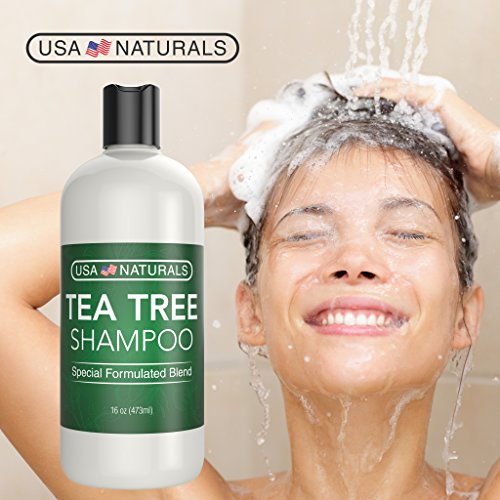 Tea Tree Oil Shampoo Sulfate-Free: Revitalize Hair, Combat Hair Loss and Cleanse Scalp with Naturally-Sourced Ingredients - Pure Tea Tree Oil, Organic Argan Oil, Organic Green Tea (Tea Tree Shampoo) by USA Naturals (Image #1)