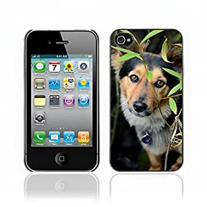 Super Stellar Slim PC Hard Case Cover Skin Armor Shell Protection // V0000879 Dog Puppy Pattern // Apple Iphone 4 4S