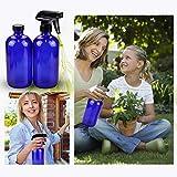 Glass Spray Bottles Kits, BonyTek Empty 12 10 ml