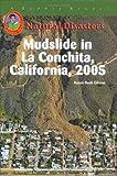 Mudslide in la Conchita, California 2005, Karen Bush Gibson, 1584154187
