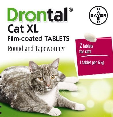 Drontal Cat Xl 2 Tab Pack By Drontal Buy Online In Guernsey At Desertcart