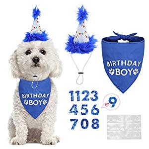 BINGPET Dog Birthday Bandana Boy Scarf and Reusable Dog Birthday Hat with 0-8 Figures