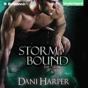 Storm Bound Audiobook