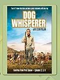 Dog Whisperer - Favorites Season One, Vol.4