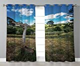 iPrint Satin Grommet Window Curtains,Hobbits,Rustic Wooden Sign in Hobbit Land East West Movie Set New Zealand The Shire,Green Brown,2 Panel Set Window Drapes,for Living Room Bedroom Kitchen Cafe