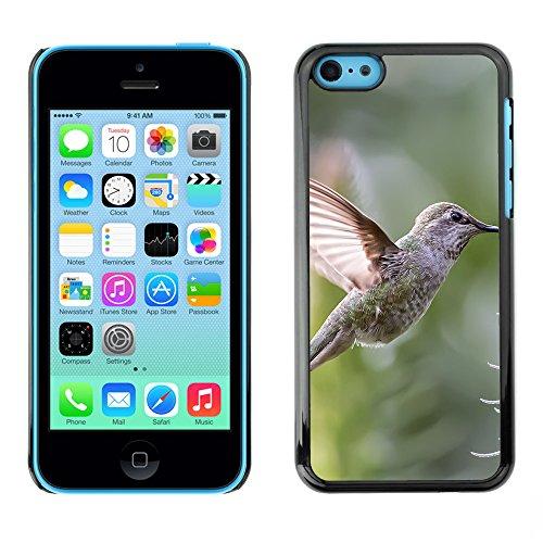 Premio Sottile Slim Cassa Custodia Case Cover Shell // F00030500 Hummingbird et de fleurs // Apple iPhone 5C