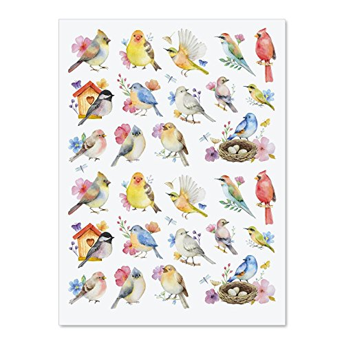 Watercolor Birds Stickers - Set of 52 stickers