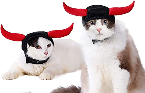 Baige Halloween Mascota Cosplay Gato Perro títere Disfraz Negro ...