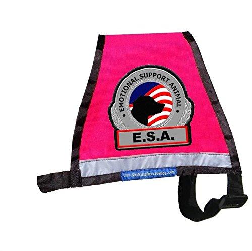 Premium Emotional Support Dog Vest