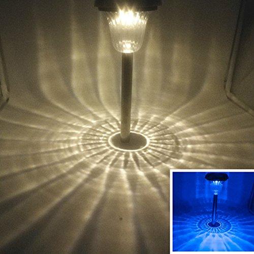 Decorative Path Lights - 5