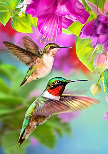 Hummers in Flight - Standard Size, Decorative Double Sided, Licensed and Copyrighted Flag - MADE IN USA by Custom Decor Inc. 28 Inch X 40 Inch approx.