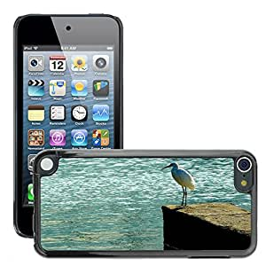 Etui Housse Coque de Protection Cover Rigide pour // M00113790 Pájaro de la naturaleza animal Animales // Apple ipod Touch 5 5G 5th
