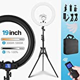 Ring Light Wireless Remote Bi-Color 19 inch Dimmable 3000K-5800K 55W LED Circle Lighting with Adjustable Tripod Stand, Carrying Bag, US/EU Adapter for YouTube Video Blogger Makeup and Selfie