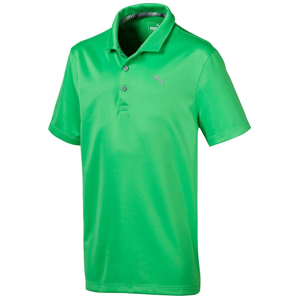 Puma Golf Boys 2019 Polo, Irish Green, Small