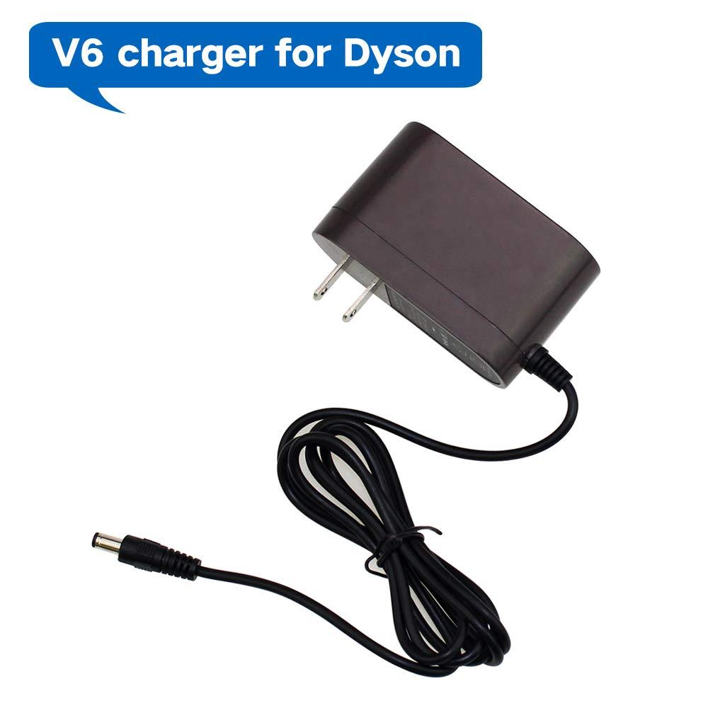 Amazon.com: Reoben V6 - Cargador de batería para aspiradora ...