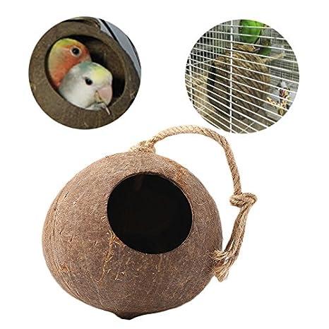 Kicode Natural Cascara de Coco Nido de Pájaro Caseta alimentador ...