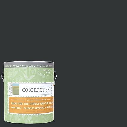 Inspired Flat Interior Paint, Nourish .06, Gallon