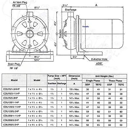 Amazon com: Ebara SS Centrifugal Pump Gallons Per Hour: 2340