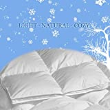 "Full / Double Size 289TC 725 Loft European White Down Comforter 37 Ounce 78""x88"""