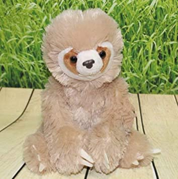 Amazon Com Caeresplush Two Toed Sloth Plush Stuffed Animal Doll