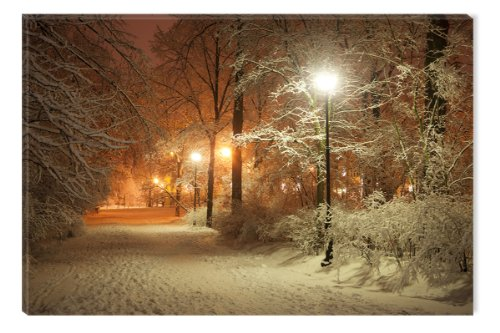 Startonight Wall Art Canvas Winter Park, Landscape USA Design for Home Decor, Dual View Surprise Artwork Modern Framed Ready to Hang Wall Art 23.62 X 35.43 Inch 100% Original Art Painting! (Halloween Winter Park)