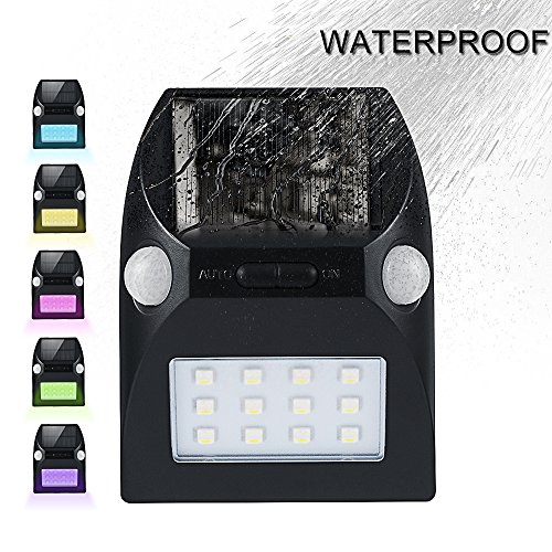 Dual Bright Outdoor Light - 5