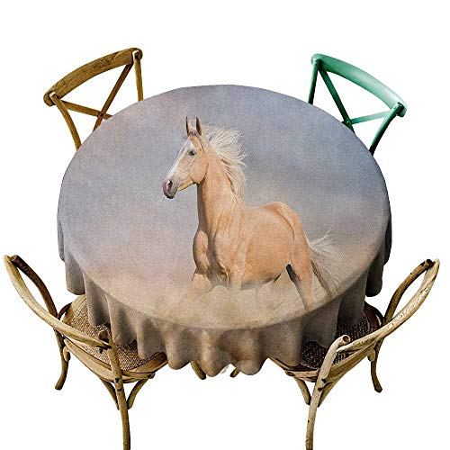 Sunnyhome Round Outdoor Tablecloth Horses Palomino Horse in Sand Desert with Long Blond Male Hair Power Wild Animal Purple Grey Peach for Banquet Decoration Dining Table Cover 63 INCH