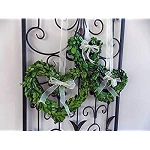 """Preserved Boxwood Heart Shaped Mini Wreath for Valentines Mothers Day Gift, Housewarming, Wedding Pews, Rustic Farmhouse Style Home Decor, Green w/Sheer Ivory Ribbon, Handmade, Choose 8"""" or 10"""" 7"""