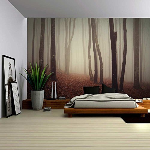 Dark and Mysterious Forest Wall Mural