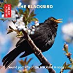 The Blackbird: Sound Portraits of the Blackbird in Song | Cheryl Tipp