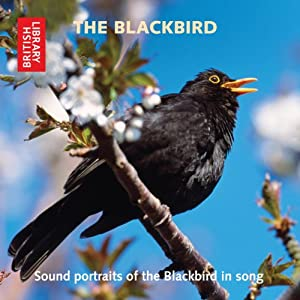 The Blackbird Audiobook
