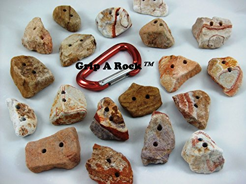 20 Rock Climbing Holds, Small (1'' to 2'' Used to add Difficulty to a Wall) Pinch Holds are Advanced Climbers. Rock Wall Holds, Rock Climbing Equipment by Grip A Rock