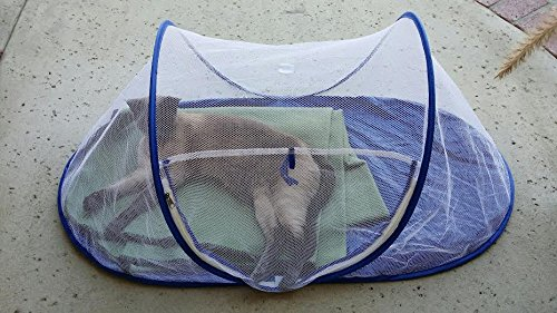 Nala and Company The Cat House Outdoor Pet Tent ... & Nala and Company The Cat House Outdoor Pet Tent With Travel Pouch ...