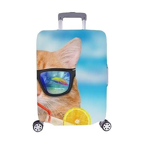 Solo Cubrir) Gato con Gafas de Sol Relajante Sea Maleta con ...