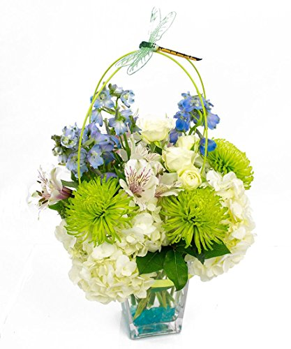(Dragonfly Days by Breen's Florist Houston - Fresh Flowers Cool Colors)