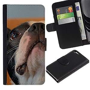 Boston Bulldog Terrier French Dog Bull - la tarjeta de Crédito Slots PU Funda de cuero Monedero caso cubierta de piel Apple iPhone 5 / iPhone 5S