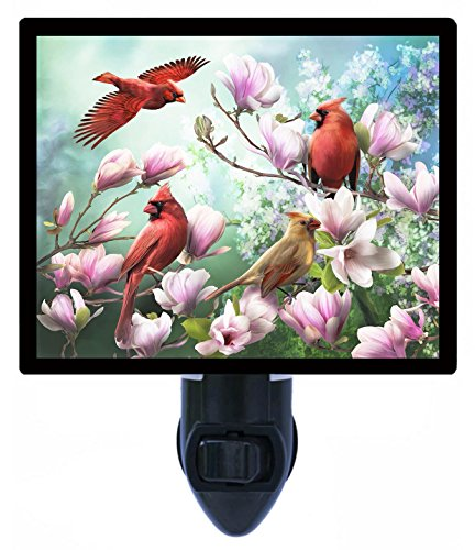Night Light - Spring Cardinals - Birds - Red Birds